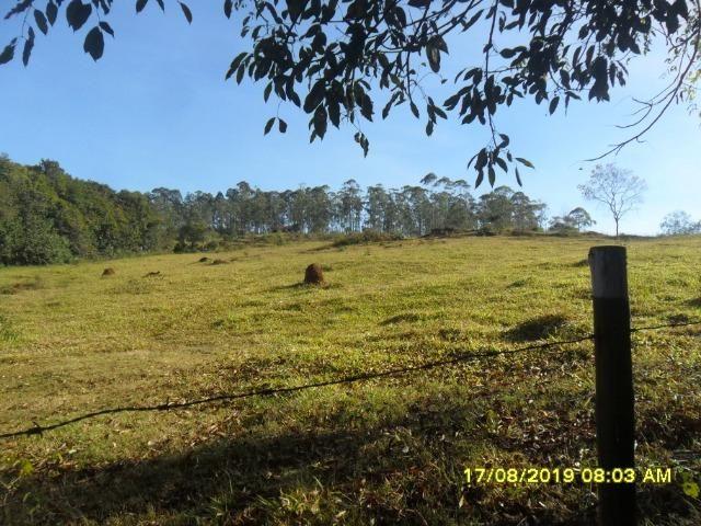 174B/ Belo haras de 12 ha pertinho da cidade de Entre Rios de Minas - Foto 3