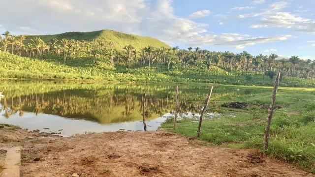 Fazenda com 430 hectares Proximo de Pedreiras - MA - Foto 6