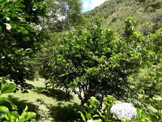 Marechal Floriano - sitio a 6 km da cidada - Foto 16