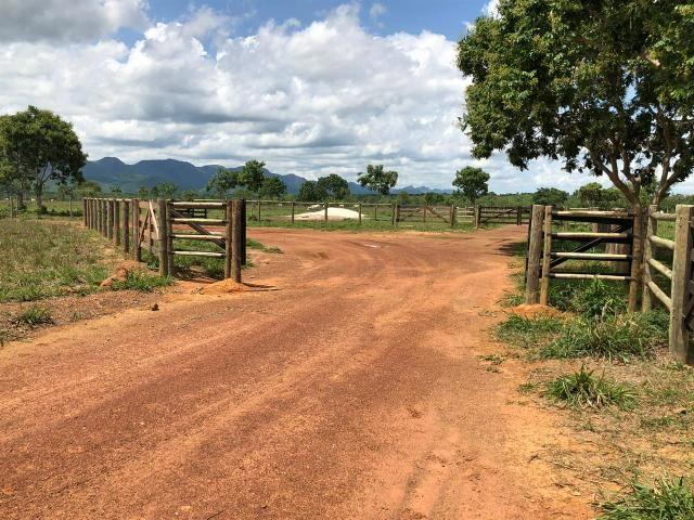 Fazenda 1.163 hectares em Livramento MT - Foto 3