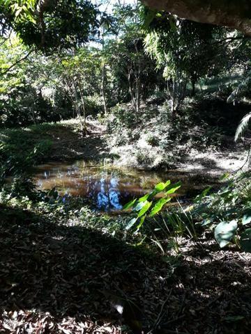 G Cód 292 Sitio em Silva Jardim/ Rj - Foto 4
