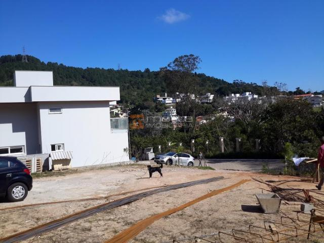 Terreno residencial à venda, itacorubi, florianópolis. - Foto 11