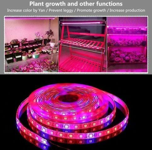COD-CP325 1 Metro Fita Led Full Spectrum Indoor Grow 7red 1blue Cultivo Aquario Automação - Foto 3
