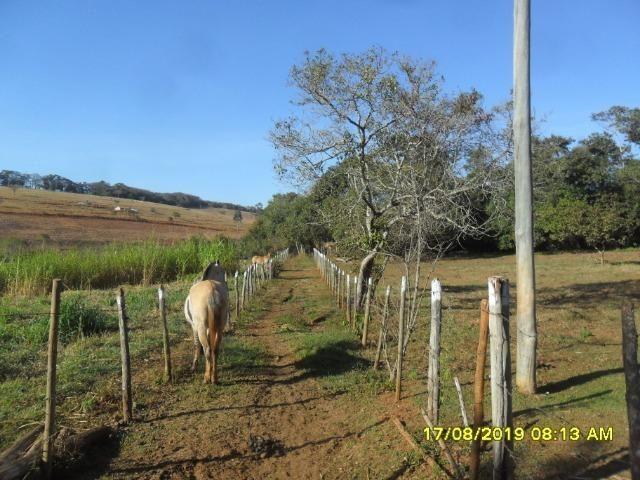 174B/ Belo haras de 12 ha pertinho da cidade de Entre Rios de Minas - Foto 2