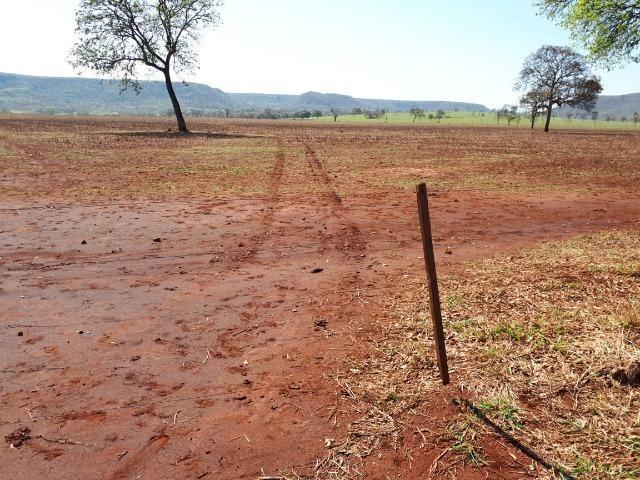 Fazenda em Campo Grande 4mil hectares!! - Foto 11