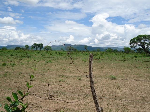 Fazenda em Monte do Carmo-To, 190ha - Foto 6