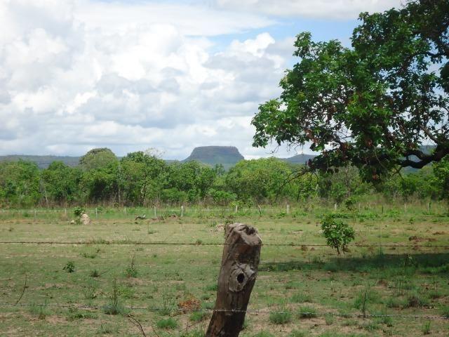 Fazenda em Monte do Carmo-To, 190ha - Foto 12