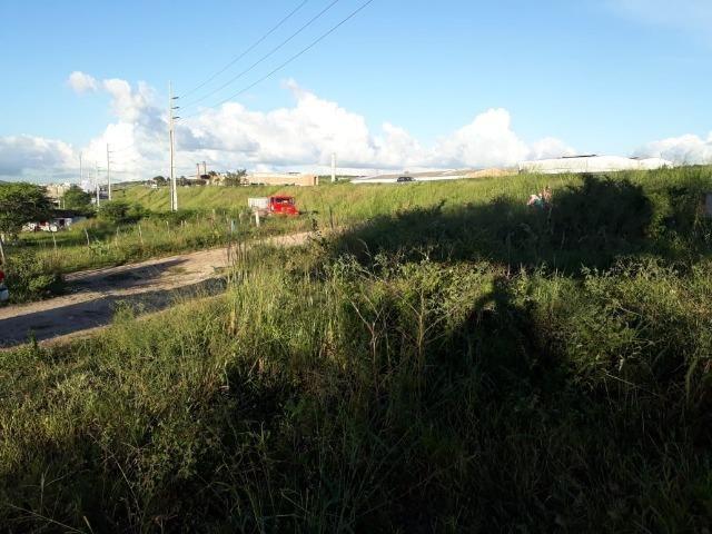 Ótima área com 4.4 hectares, em Caruaru-PE. Vende-se completa ou em partes.Aceita trocas! - Foto 3