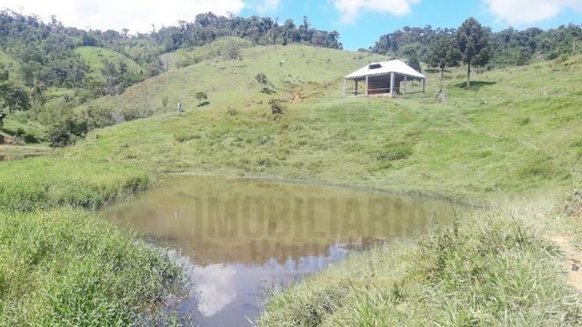 Fazenda de 100 alqueires paulistas, Campina Grande do Sul / PR - Foto 9