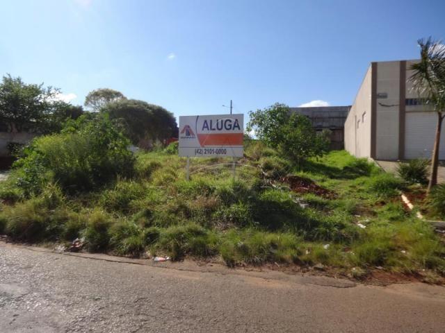 Terreno para alugar em Uvaranas, Ponta grossa cod:L1916 - Foto 2