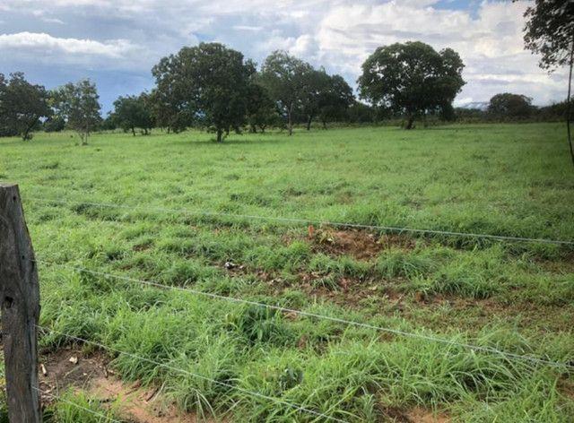 Fazenda na Rodovia BR-324 Candeias (parcelamento no boleto) - Foto 5