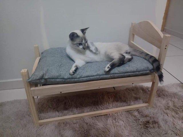 Cães e gatos cama  - Foto 3