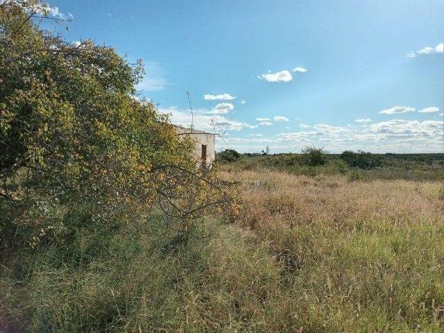 Arrendo propriedade rural na Chapada Diamantina, Morro do Chapéu-Ba - Foto 16