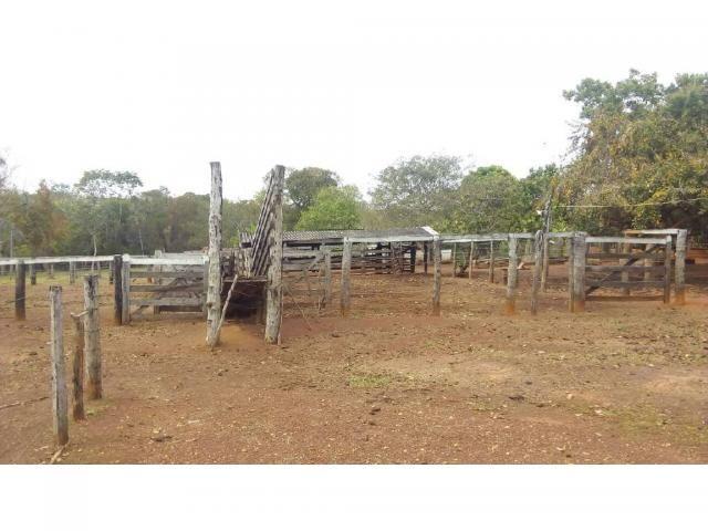 Chácara à venda em Zona rural, Pocone cod:20534 - Foto 7