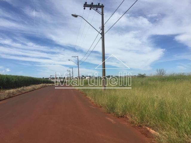 Escritório à venda em Rodovia anhanguera, Cravinhos cod:V21970 - Foto 20