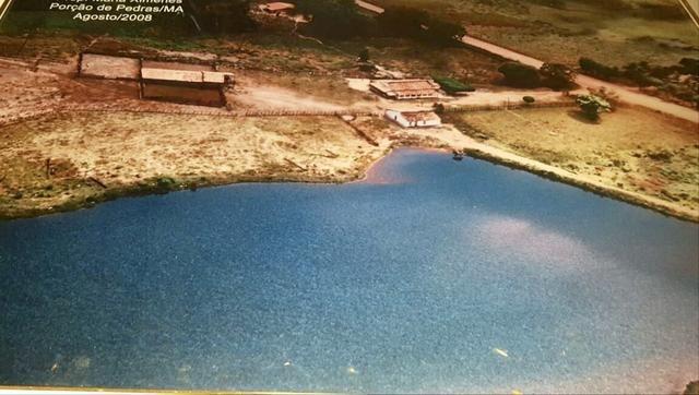 Fazenda com 430 hectares Proximo de Pedreiras - MA - Foto 7