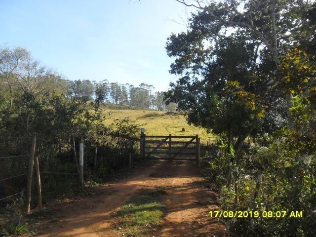 174B/ Belo haras de 12 ha pertinho da cidade de Entre Rios de Minas - Foto 6