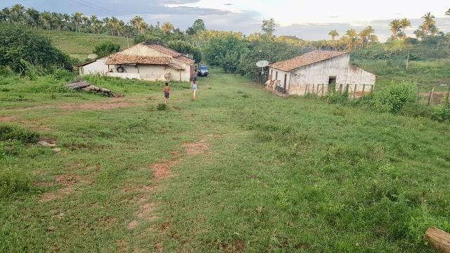 Fazenda com 430 hectares Proximo de Pedreiras - MA - Foto 3