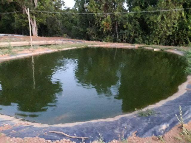 Fazenda à venda, por R$ 900.000.00 - Zona Rural - Luziânia/GO - Foto 20