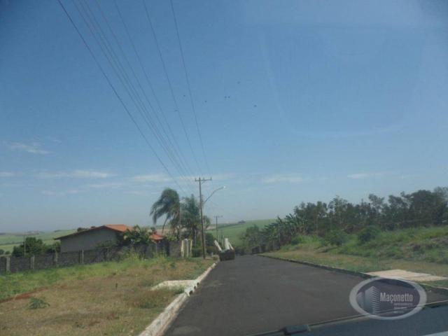 Chácara com 2 dormitórios para alugar, 500 m² por R$ 2.000/mês - Zona Rural - Ribeirão Pre - Foto 3