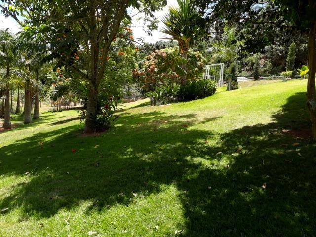 Marechal Floriano - sitio a 6 km da cidada - Foto 12