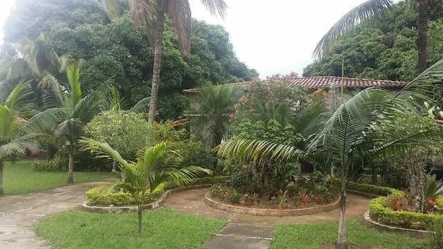 Sítio 9.000 m² com 2 casas - piscina - área social - todo murado - Itaguaí - Foto 15