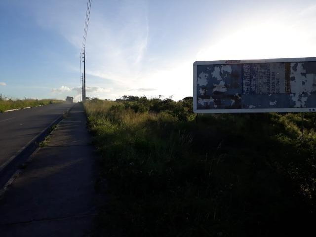 Ótima área com 4.4 hectares, em Caruaru-PE. Vende-se completa ou em partes.Aceita trocas! - Foto 16