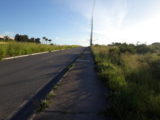 Ótima área com 4.4 hectares, em Caruaru-PE. Vende-se completa ou em partes.Aceita trocas! - Foto 17