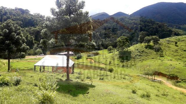 Fazenda de 100 alqueires paulistas, Campina Grande do Sul / PR - Foto 5