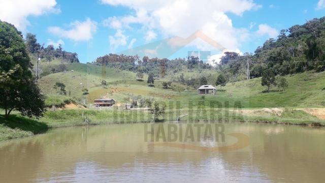 Fazenda de 100 alqueires paulistas, Campina Grande do Sul / PR - Foto 6