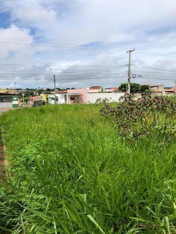 Terreno na Avenida Principal do Plaza Garden - Jardins - São Gonçalo do Amarante - Foto 10