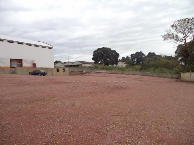Galpão/depósito/armazém para alugar em Estrela, Ponta grossa cod:L270 - Foto 2