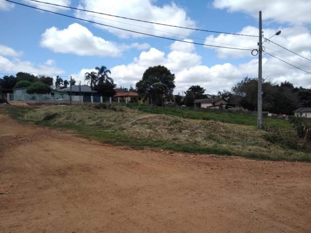 Terreno à venda em Colonia dona luiza, Ponta grossa cod:V2564 - Foto 3