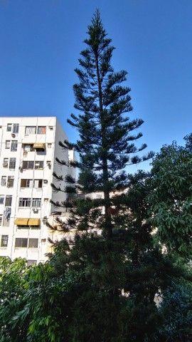 Alugo Apartamento Temporada Catete. Próximo Metrô, Centro. Silencioso, vista para jardim. - Foto 19