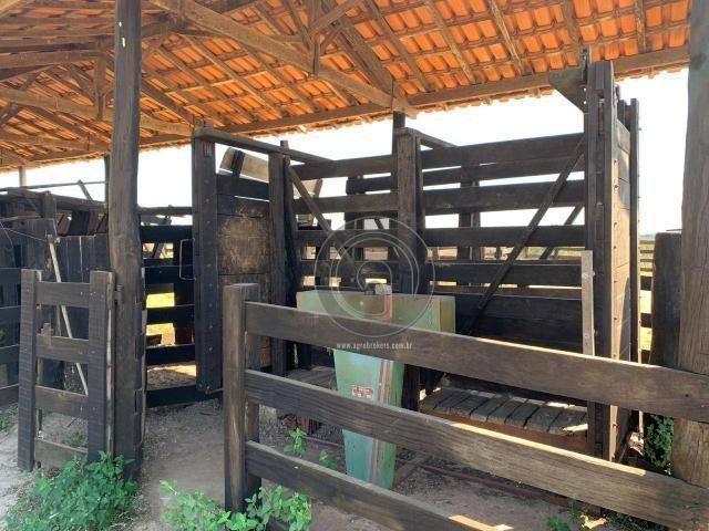Fazenda 490 ha estrada de cáceres - Foto 11