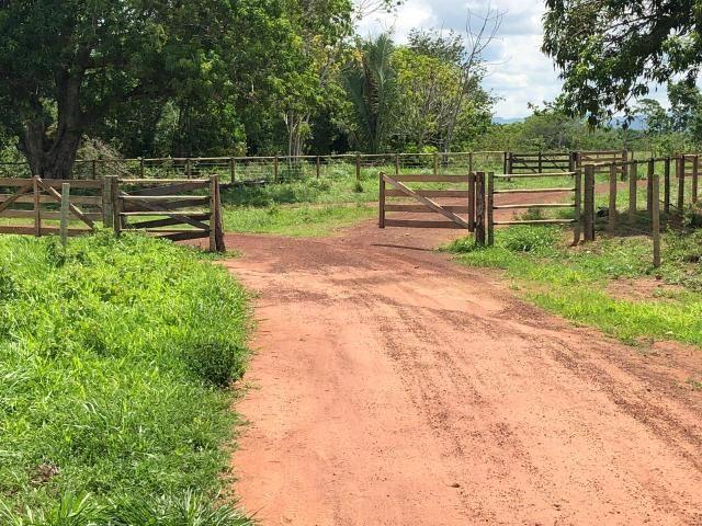 Fazenda 1.163 hectares em Livramento MT - Foto 6