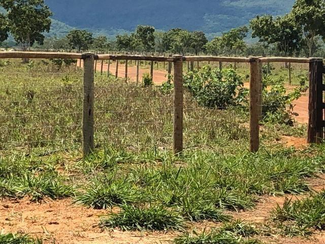 Fazenda 1.163 hectares em Livramento MT - Foto 11