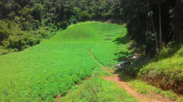 Lindo terreno de 2,8 hectares em Delfim Moreira Sul de Minas Gerais