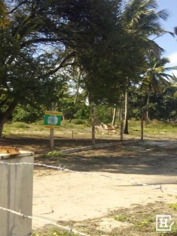 Terreno à venda! no mosqueiro - Foto 4