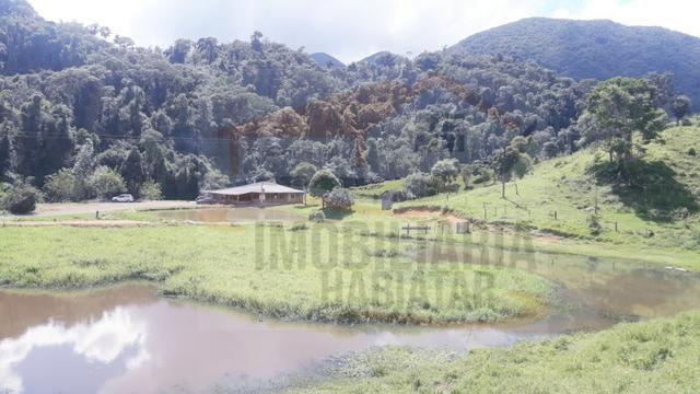 Fazenda de 100 alqueires paulistas, Campina Grande do Sul / PR - Foto 4