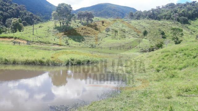 Fazenda de 100 alqueires paulistas, Campina Grande do Sul / PR - Foto 8