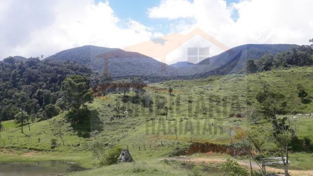 Fazenda de 100 alqueires paulistas, Campina Grande do Sul / PR - Foto 11