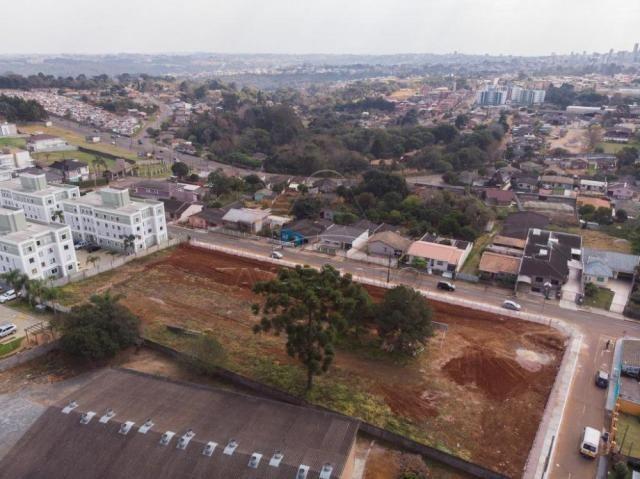 Terreno à venda em Colonia dona luiza, Ponta grossa cod:V1060 - Foto 2