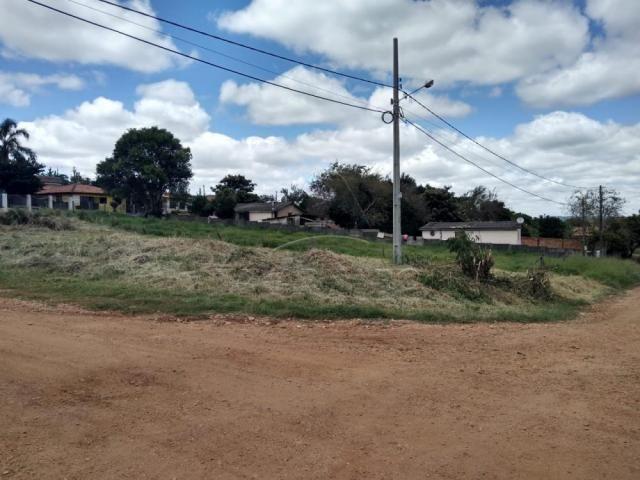 Terreno à venda em Colonia dona luiza, Ponta grossa cod:V2564 - Foto 2