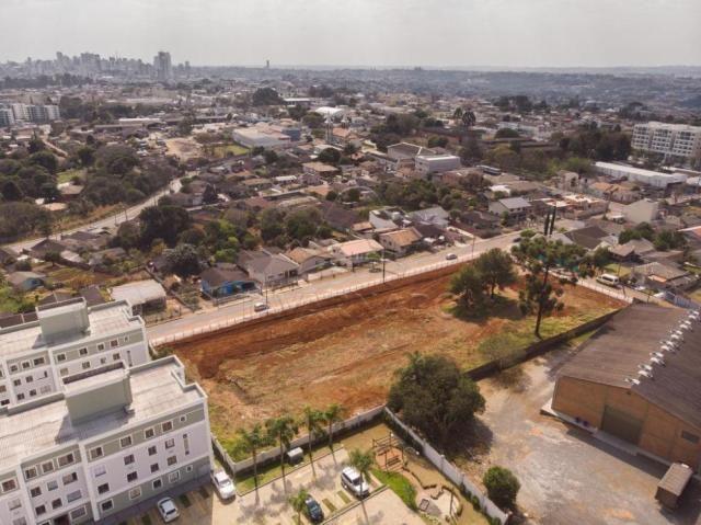 Terreno à venda em Colonia dona luiza, Ponta grossa cod:V1060 - Foto 3
