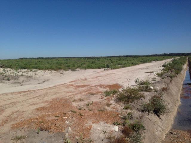 Fazenda 50.000 há (Porteira Fechada) - Foto 6