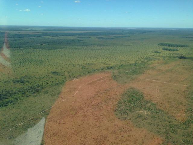 Fazenda 50.000 há (Porteira Fechada) - Foto 4