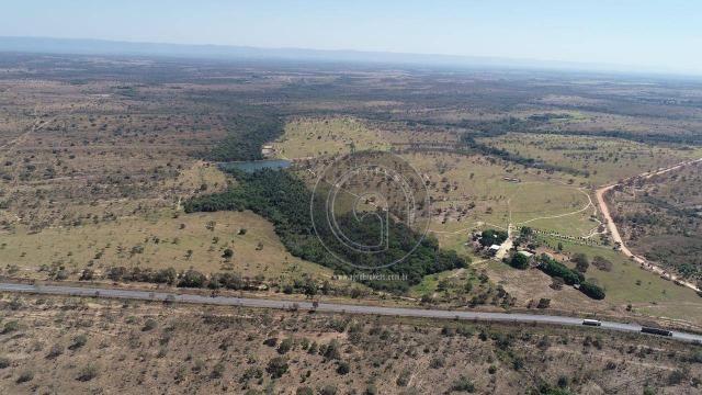 Fazenda 490 ha estrada de cáceres - Foto 4