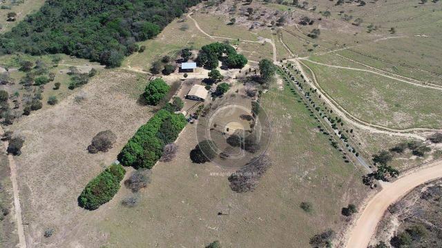 Fazenda 490 ha estrada de cáceres - Foto 18