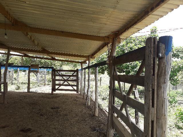 Fazenda à venda, por R$ 900.000.00 - Zona Rural - Luziânia/GO - Foto 17
